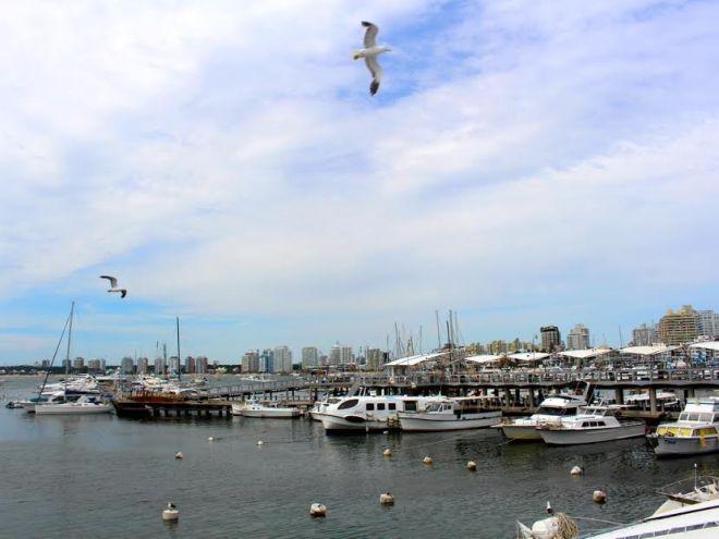 porto punta del este dicas de viagem uruguay